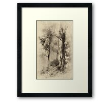 Mount Wilson - The Sepia Series #3 - Mount Wilson NSW  - The HDR Experience Framed Print