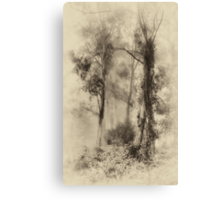 Mount Wilson - The Sepia Series #3 - Mount Wilson NSW  - The HDR Experience Canvas Print