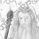 Gandalf the grey sketch by Chris Neal