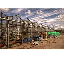 Greenhouse Photographic Print