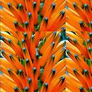 Orange Bud Medley by paintingsheep