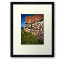 Canal bridge with Dandelions Framed Print