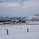 Snowy Scene by Diane28