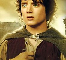 Frodo (iPad/iPhone/iPod) by aforceofnature