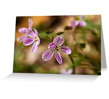 Shy Wildflower Greeting Card