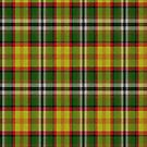 02333 San Bernardino County, California District Tartan Fabric Print Iphone Case by Detnecs2013