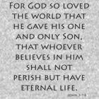 John 3:16 - New International (Bible Verses) by aforceofnature