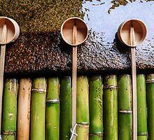The Art of Placement- Miyajima, Japan by samanthaleebee