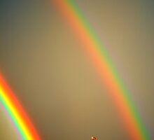 Double Rainbow by Steve