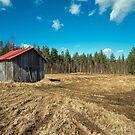 Barn-2013 by ilpo laurila