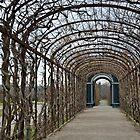 Schonbrunn palace garden by Arie Koene