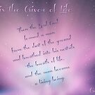 ~ God is The Giver of Life ~ by Donna Keevers Driver