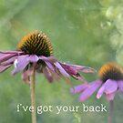 i've got your back by Elizabeth Halt