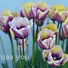 i miss you by Elizabeth Halt