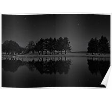 Tree Line at Night Poster