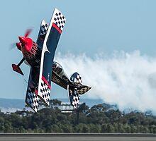 Flying Low Flying Sideways by JohnKarmouche
