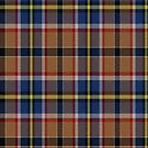 02340 Bexar County, Texas District Tartan Fabric Print Iphone Case by Detnecs2013