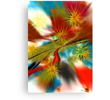 ANOMALOUS 2 The Lighter Side Canvas Print