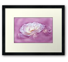 Beauty in the Mist - Pink Framed Print