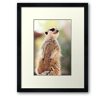 Im so lonely Framed Print