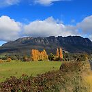 Mt Roland in Autumn by Cameron B