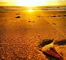 Golden Sunrise by MyWishComeTrue