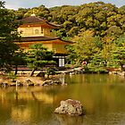 Golden Palace, Japan by Emily McAuliffe