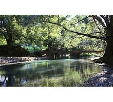 Hopkins Creek ... Photographic Print