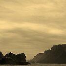 south end, tasman peninsula. eastcoast, tasmania by tim buckley | bodhiimages