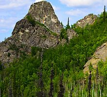 Hiking in Alaskas outback by raymona pooler