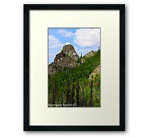 Hiking in Alaskas outback Framed Print