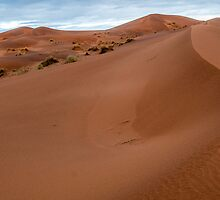 reportage-morocco 9 by rudy pessina
