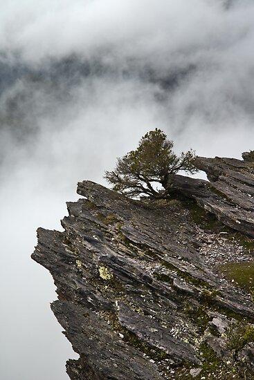Cloud at Bluff Knoll by Werner Padarin