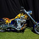 Harley-Davidson  by Steve Bass