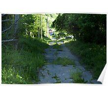 rural road Poster
