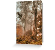 Guardians In The Mist  - Mount Wilson - NSW  - The HDR Experience Greeting Card