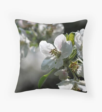 old apple tree 3 Throw Pillow