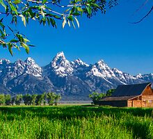 Jackson Hole Moulton Barn by Jerry Patterson