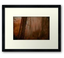 Painting With The Camera - Mount Wilson NSW The HDR Experience Framed Print