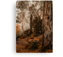 Bush Guardians  - Mount Wilson - NSW  - The HDR Experience Canvas Print