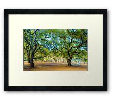 Beaufort, SC Framed Print
