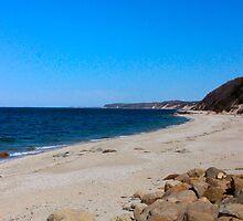 Sea Shore by RogerEchauri