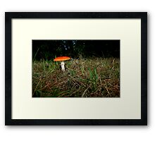Bright Spot of an Autumn Morning Framed Print