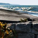 Beach at Conneaut, Ohio by Sheri Nye