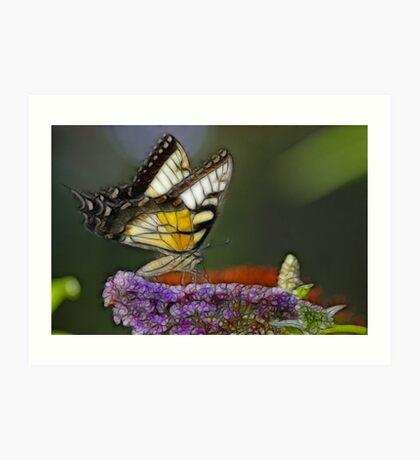 Butterfly in Fractalius Art Print
