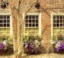 Charleston  Windows  by JHRphotoART