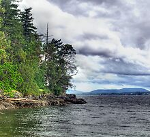 Elliot Beach Park - Ladysmith  by Trish  Hooker
