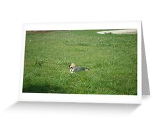 Leave Me Alone! Greeting Card