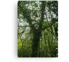 Tree of Protection Canvas Print