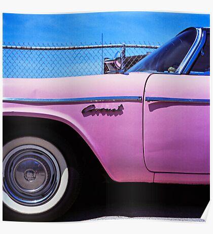 Pink Coronet Poster